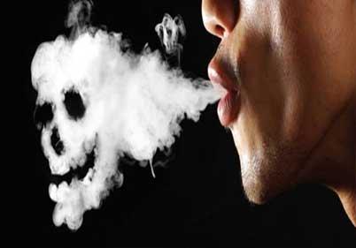 Exotic 24 Hour Video & Smoke