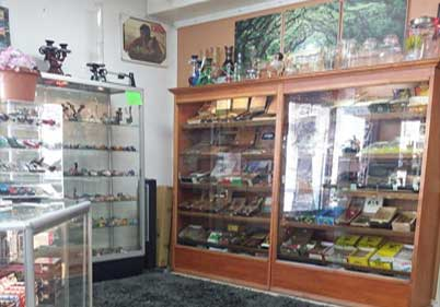 Psychedelic Wizard Smoke Shop